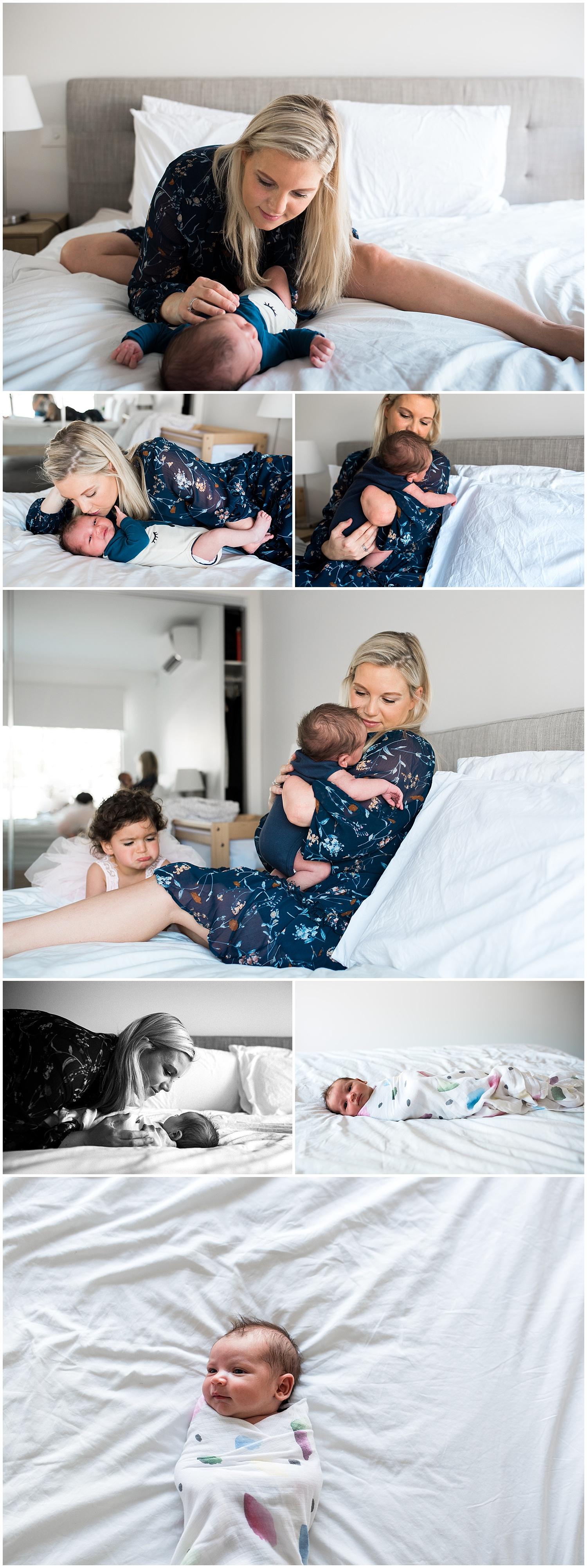 hampton melbourne newborn photographer