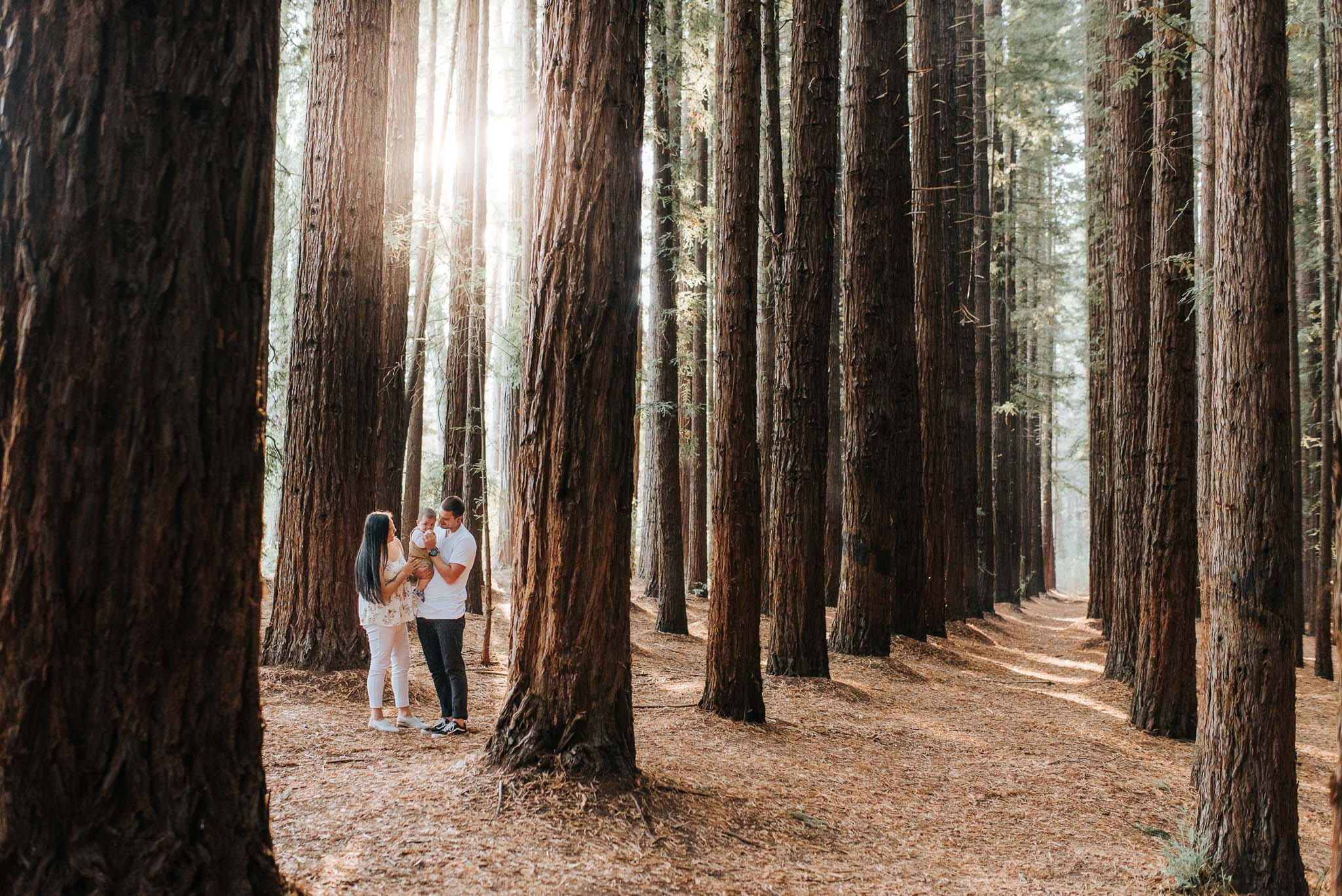 beautiful family photography in the dandenong ranges, Melbourne
