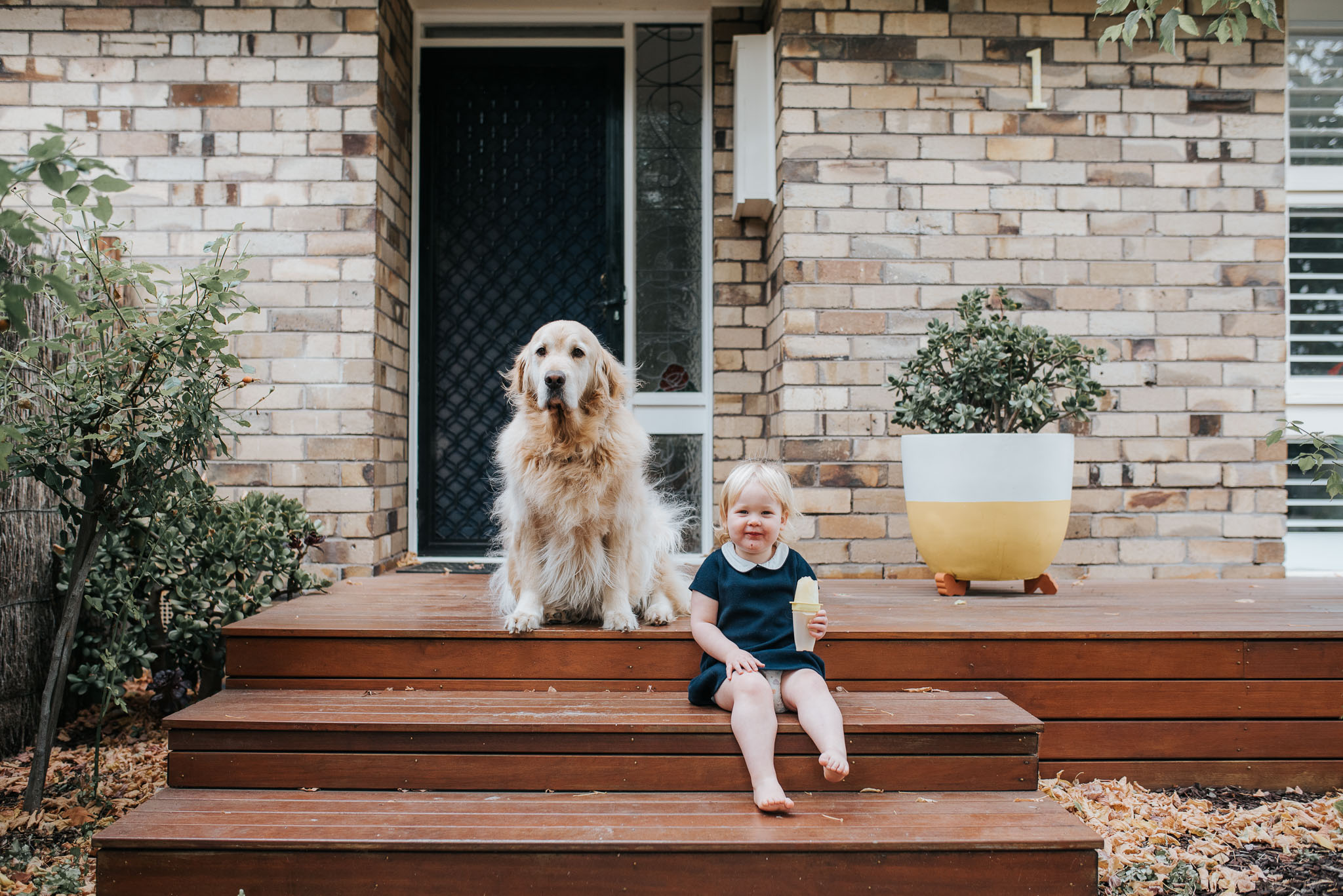 child portraits including pets - Melbourne lifestyle family photographer