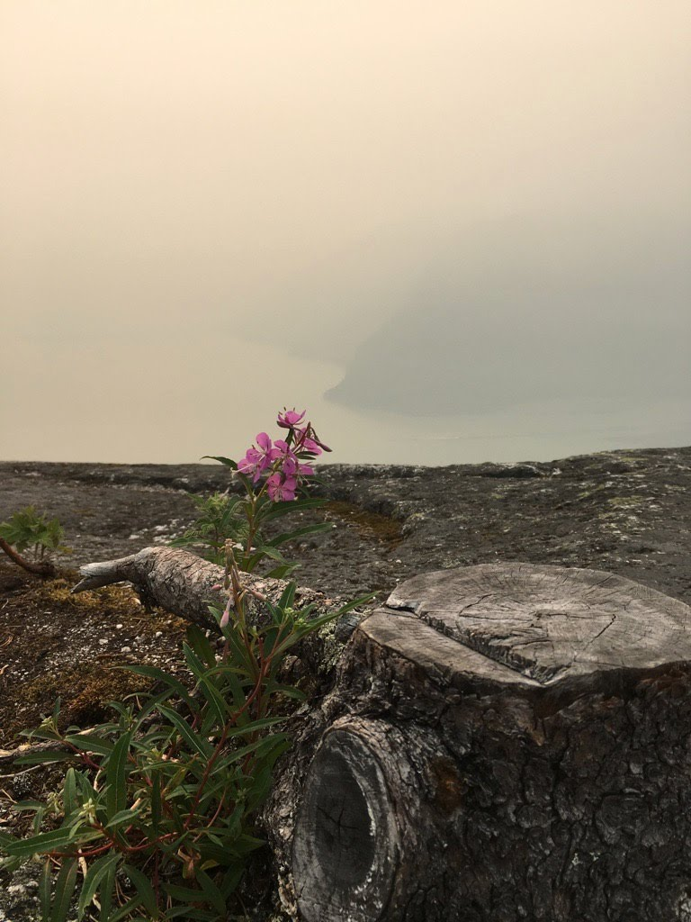 The view from the top of the Chief on a smoky day