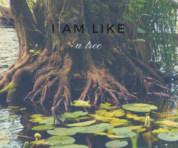 I am Like a Tree.png
