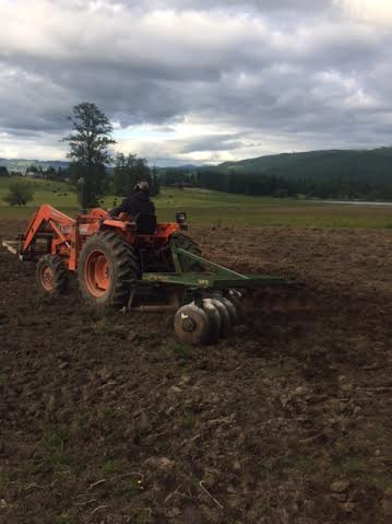 The sequence is to disk, plow, disk, sow seeds, disk again