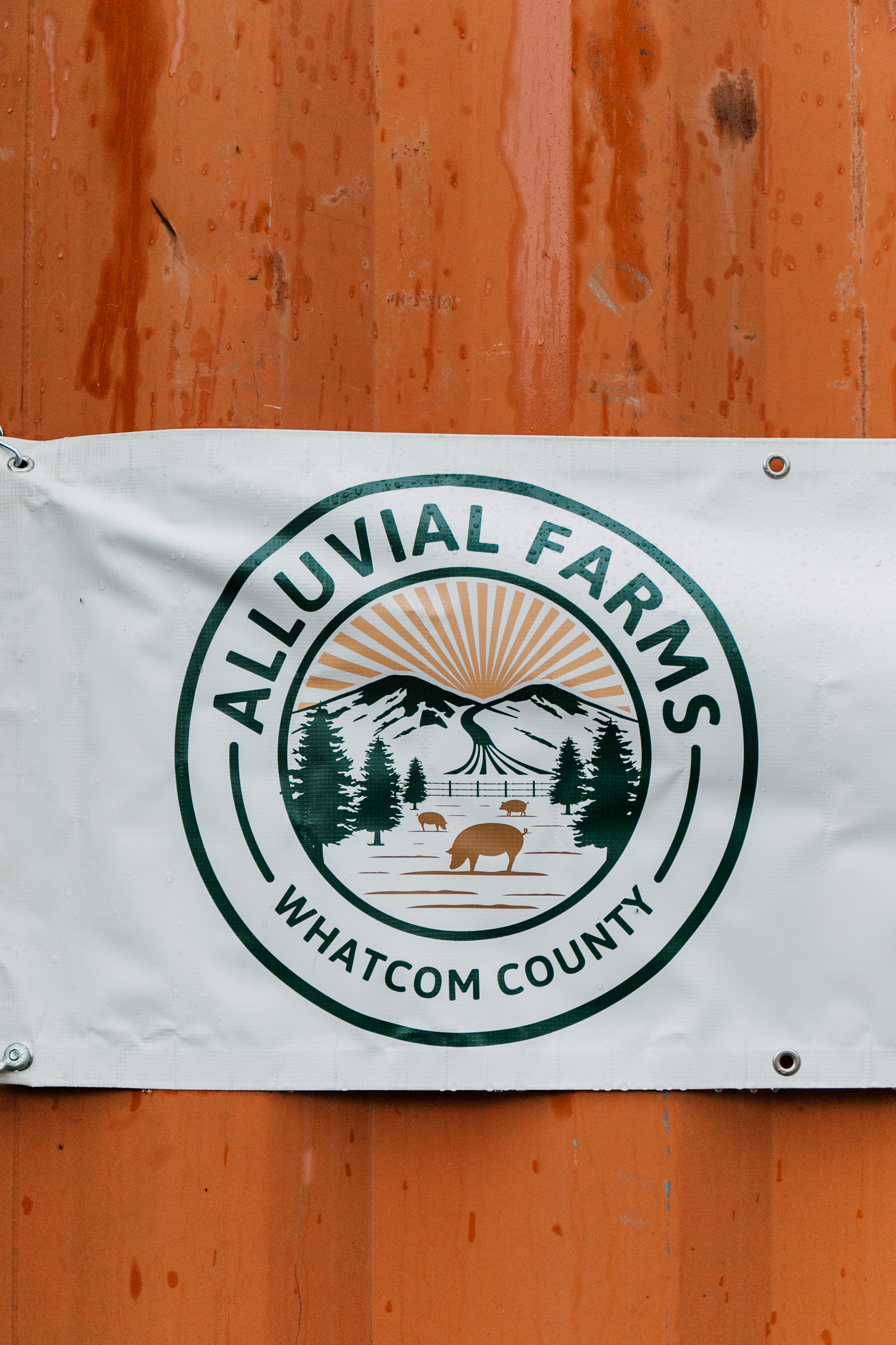Alluvial Farms returns to Bellingham Farmers Market - This Saturday October 20, from 10 - 3 pm