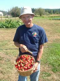 Bellingham Country Gardens   U-pick, no spray, berries and vegetables. Check facebook for hours and crops in season. Visit with Sam and Donna Grubbs on their heritage farm.