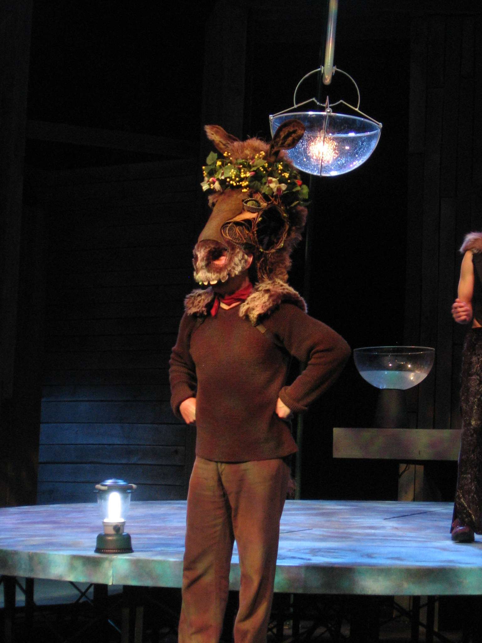 "Copy of ""A Midsummer Night's Dream"" at American Players Theatre, 2008"