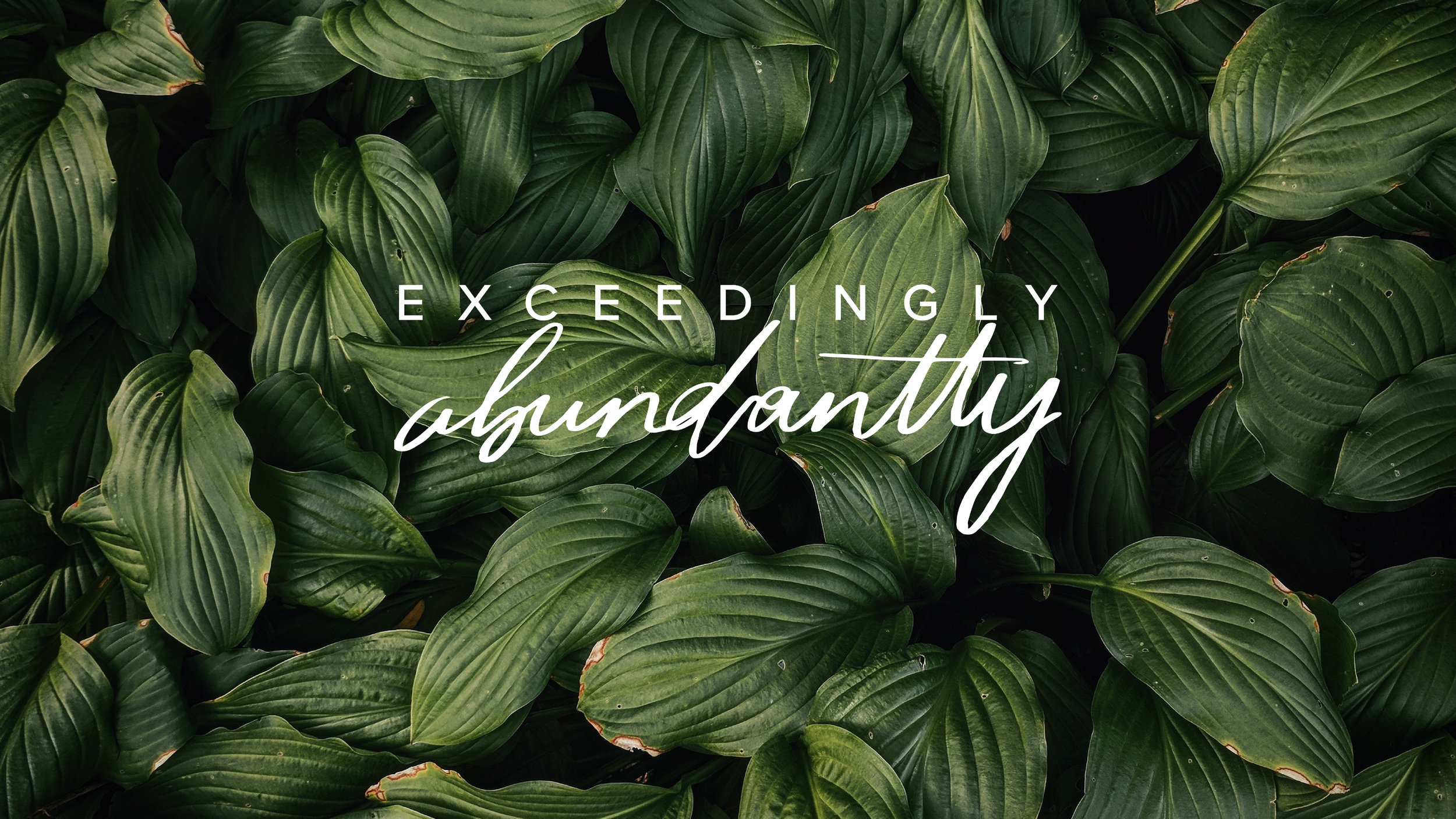 Exceedingly Abundantly / Branding Design