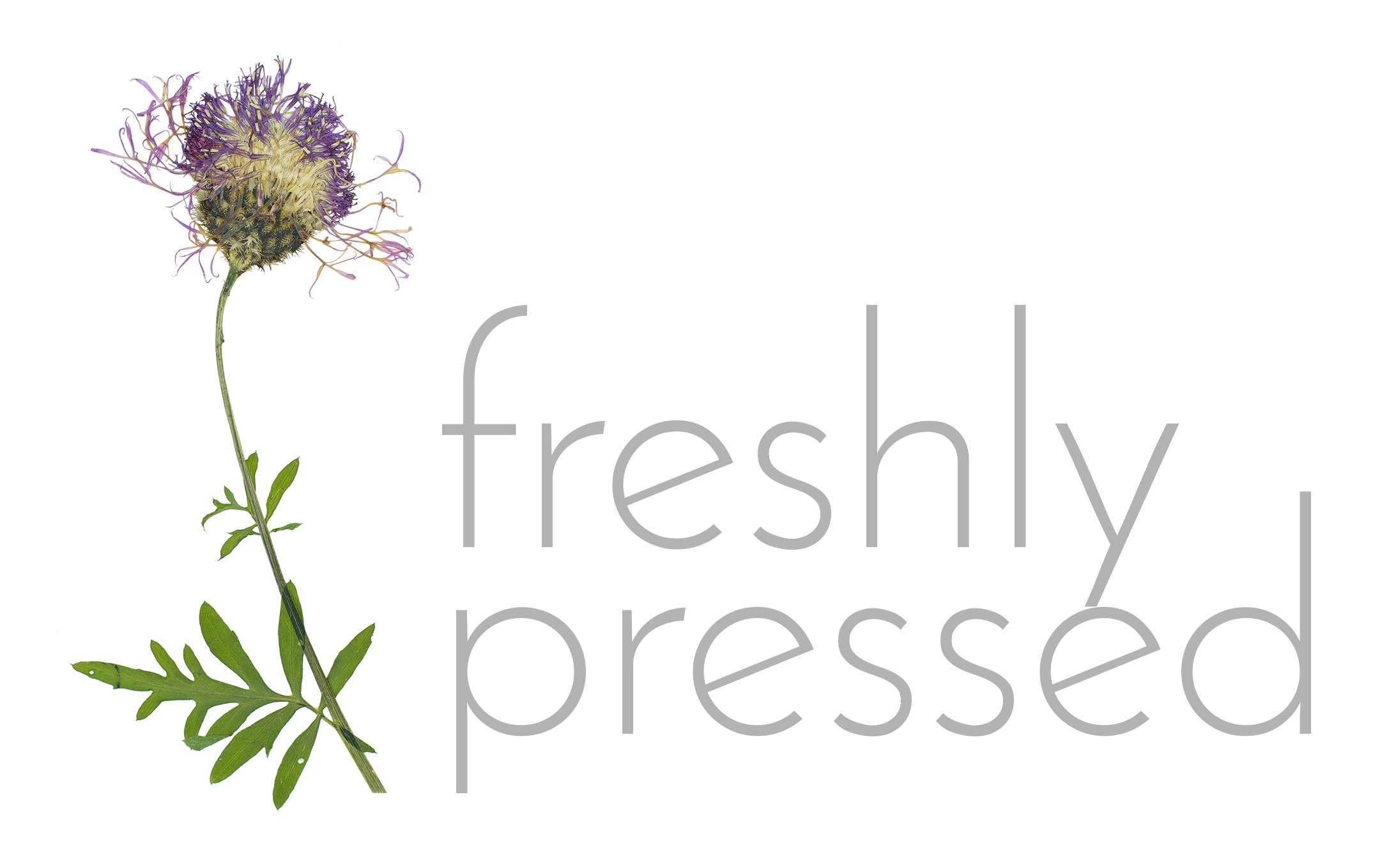 freshly-pressed.jpg