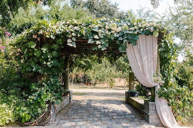 Beautifully draped and decorated by the incredibly talented @pineapplepetalsstudio 🌸🌷🌺 September may be the best month for the grape gazebo 👌🏼🌿📸: @cyeetheworld #sacramentowedding
