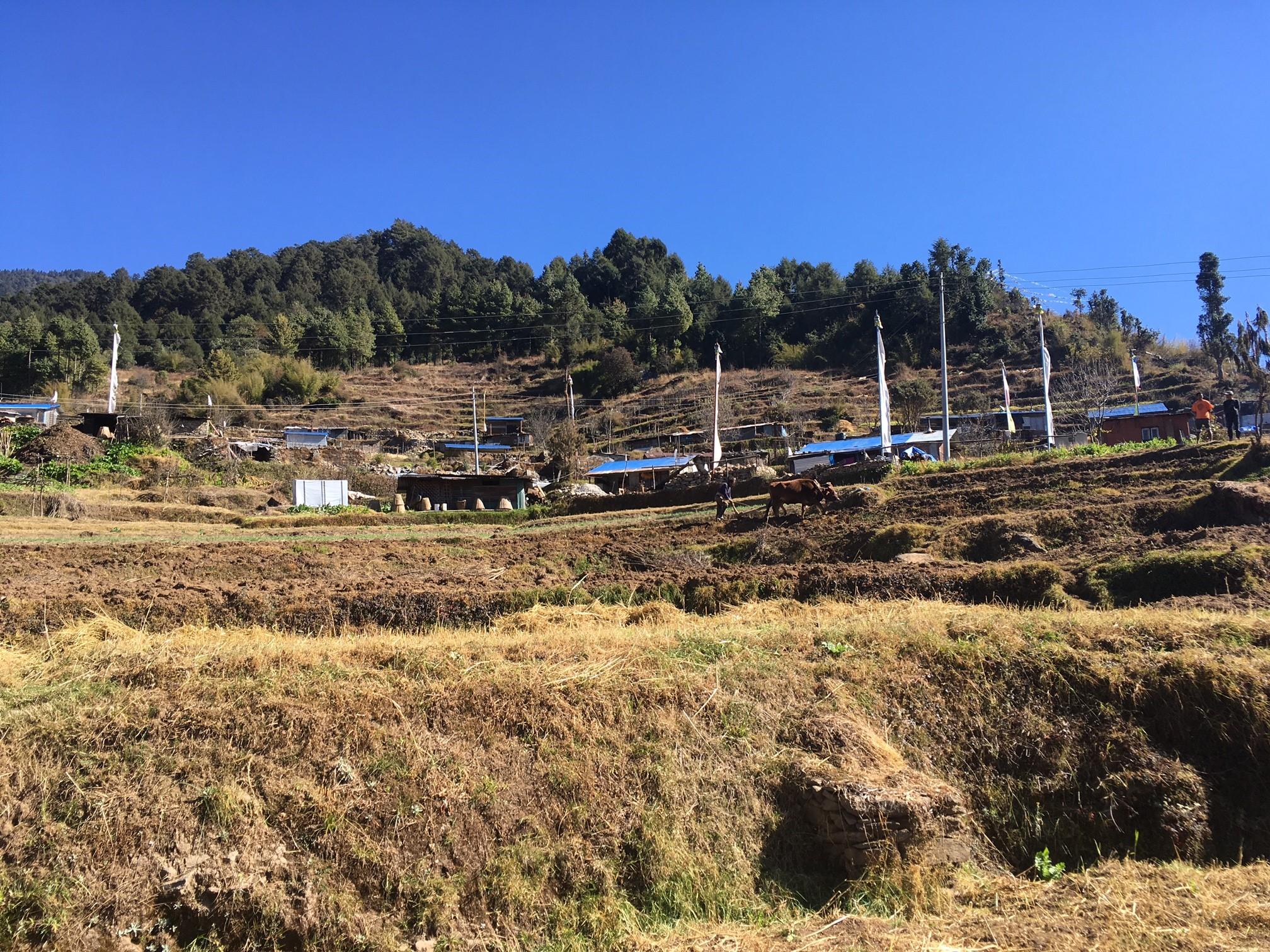 The village of Upper Gyangul.