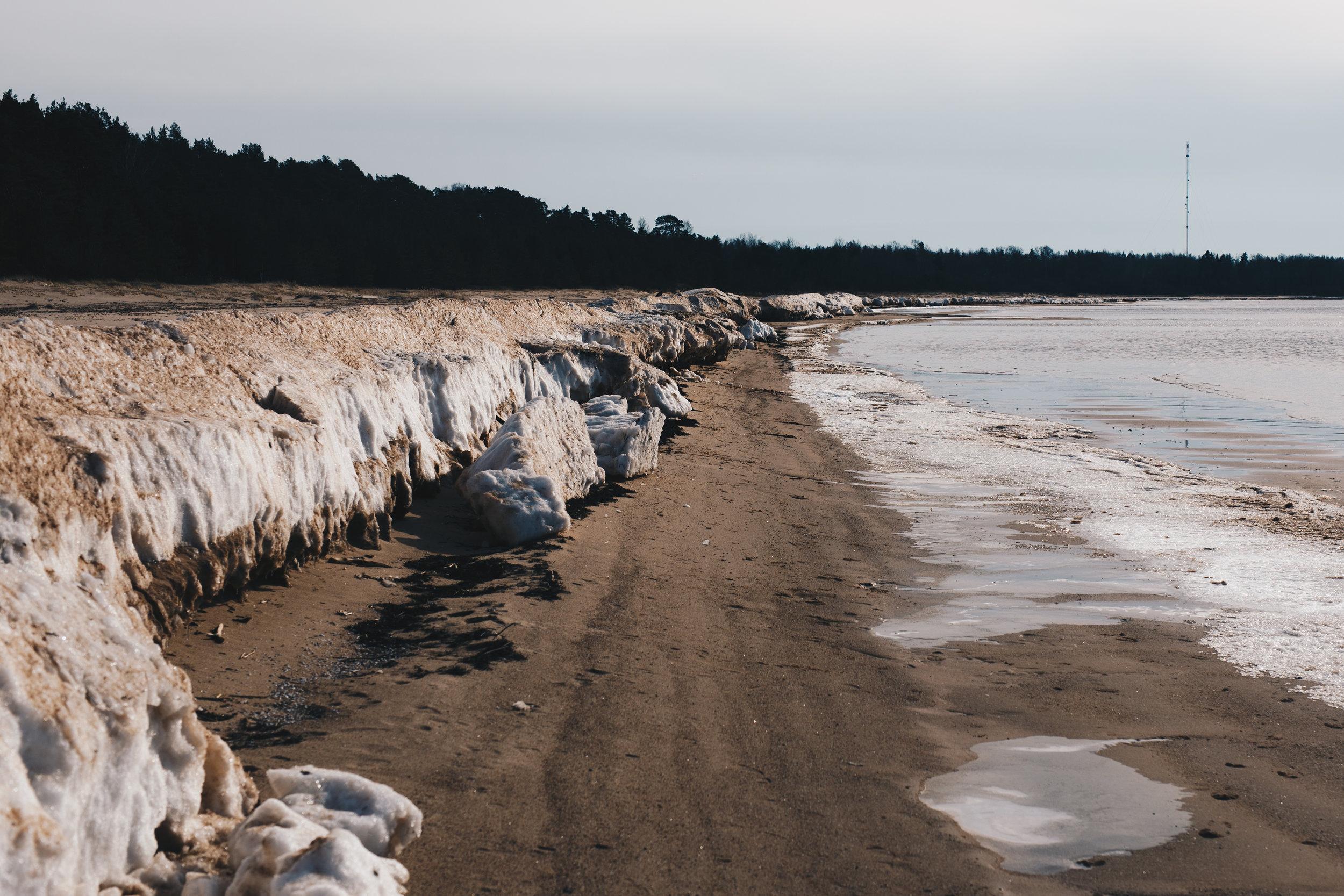 ArcticDay4-1.jpg