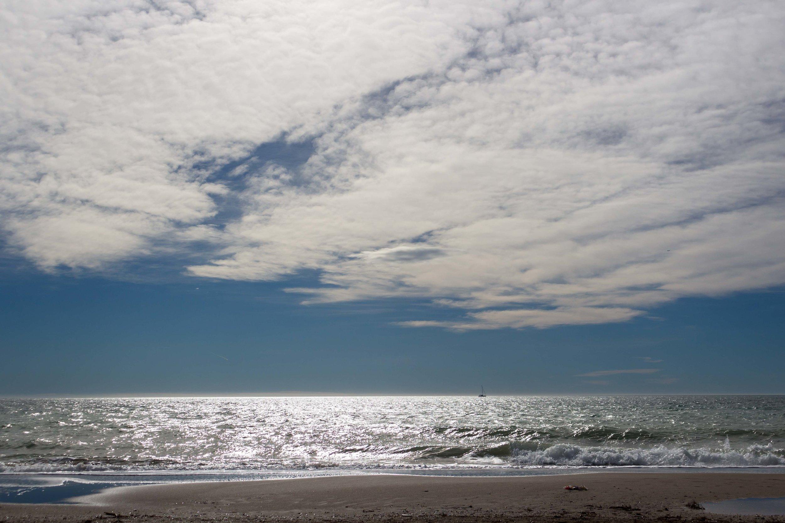 beachwebsite.jpg