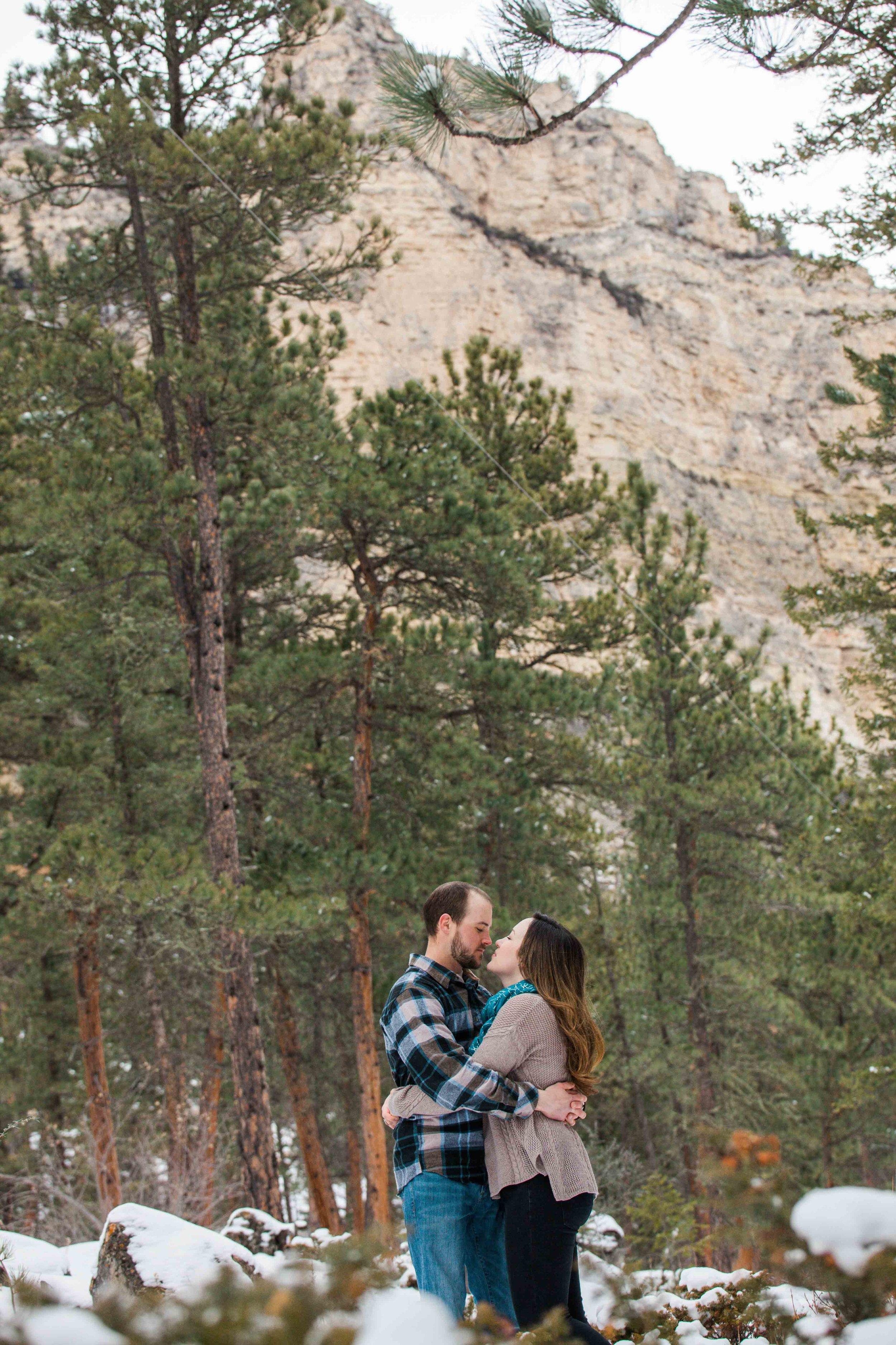 Ponderosas - Kerns Photography - Sheridan Wyoming