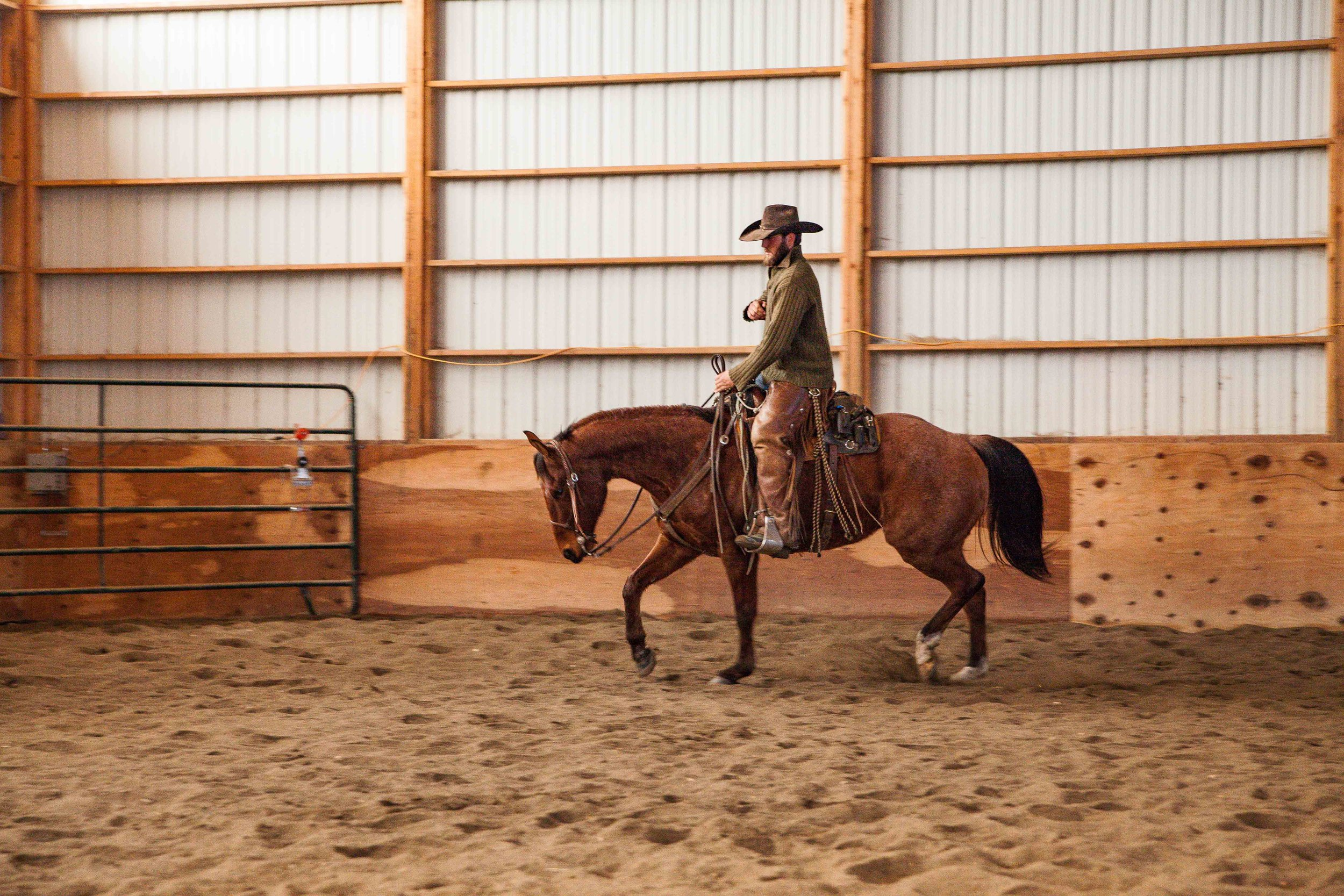 Rawhide Quarter Horses - REAL Ranch Horse Sale in Billings Montana
