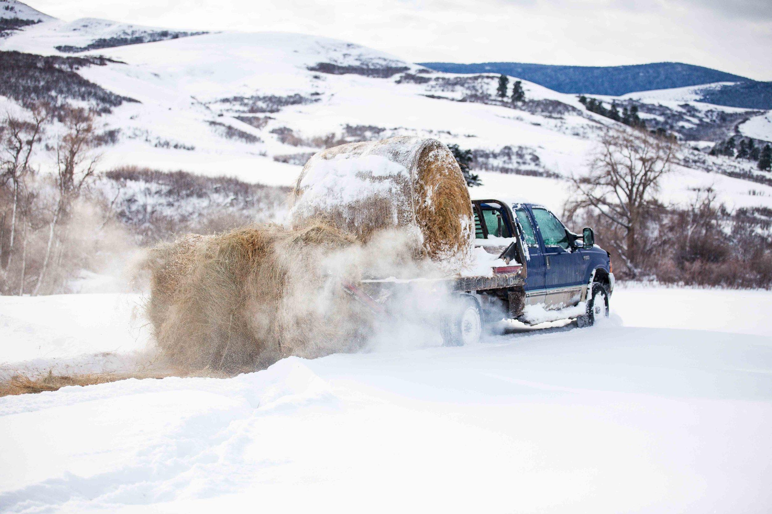 Lower hydrolic arms and unroll hay