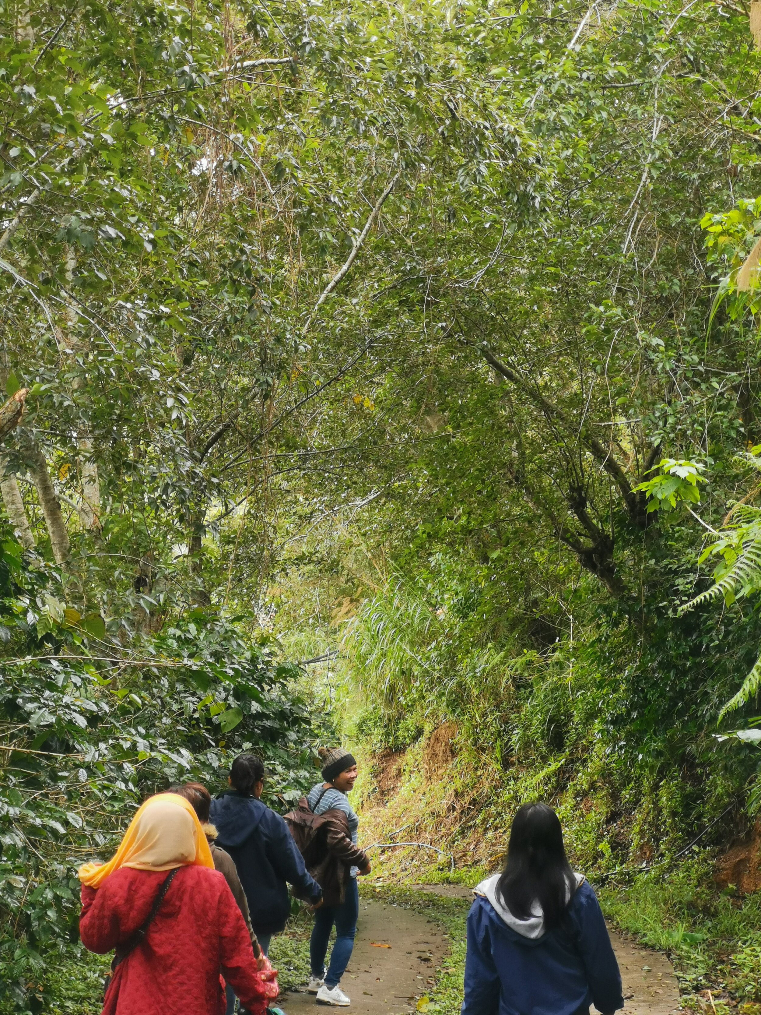 On our walk down to Sitio Belis.