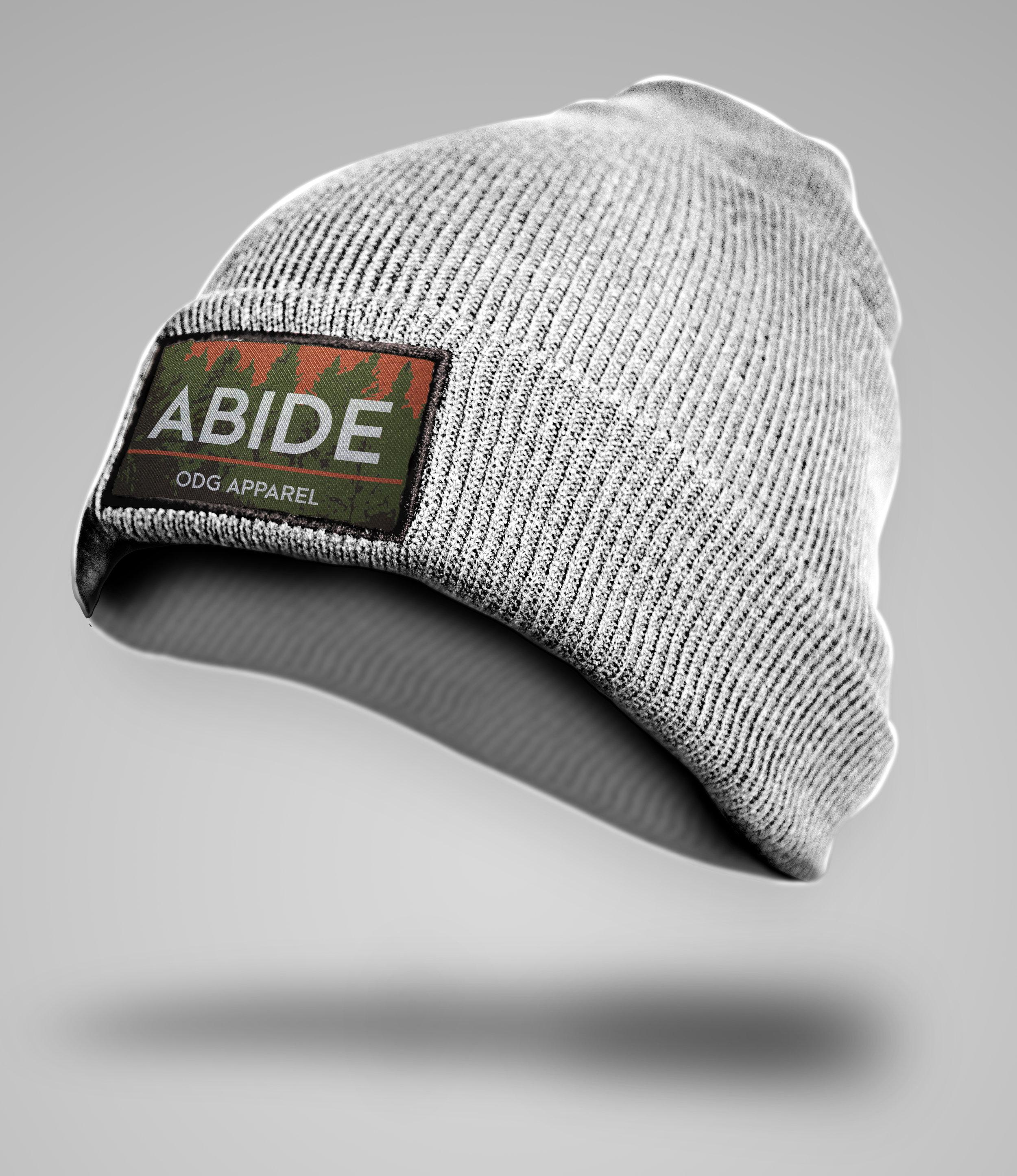 ABIDE_mock.jpg