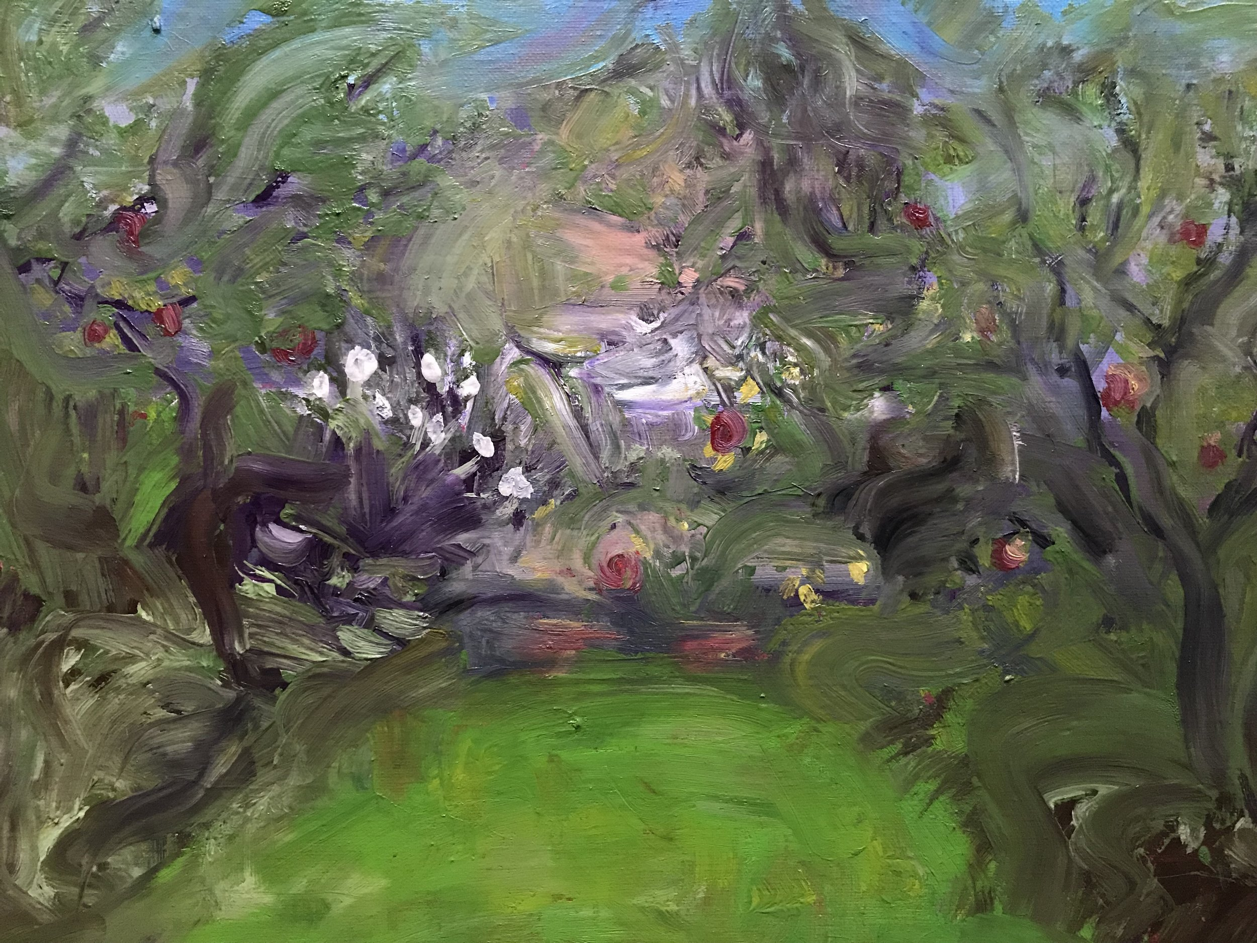 Garden with apples
