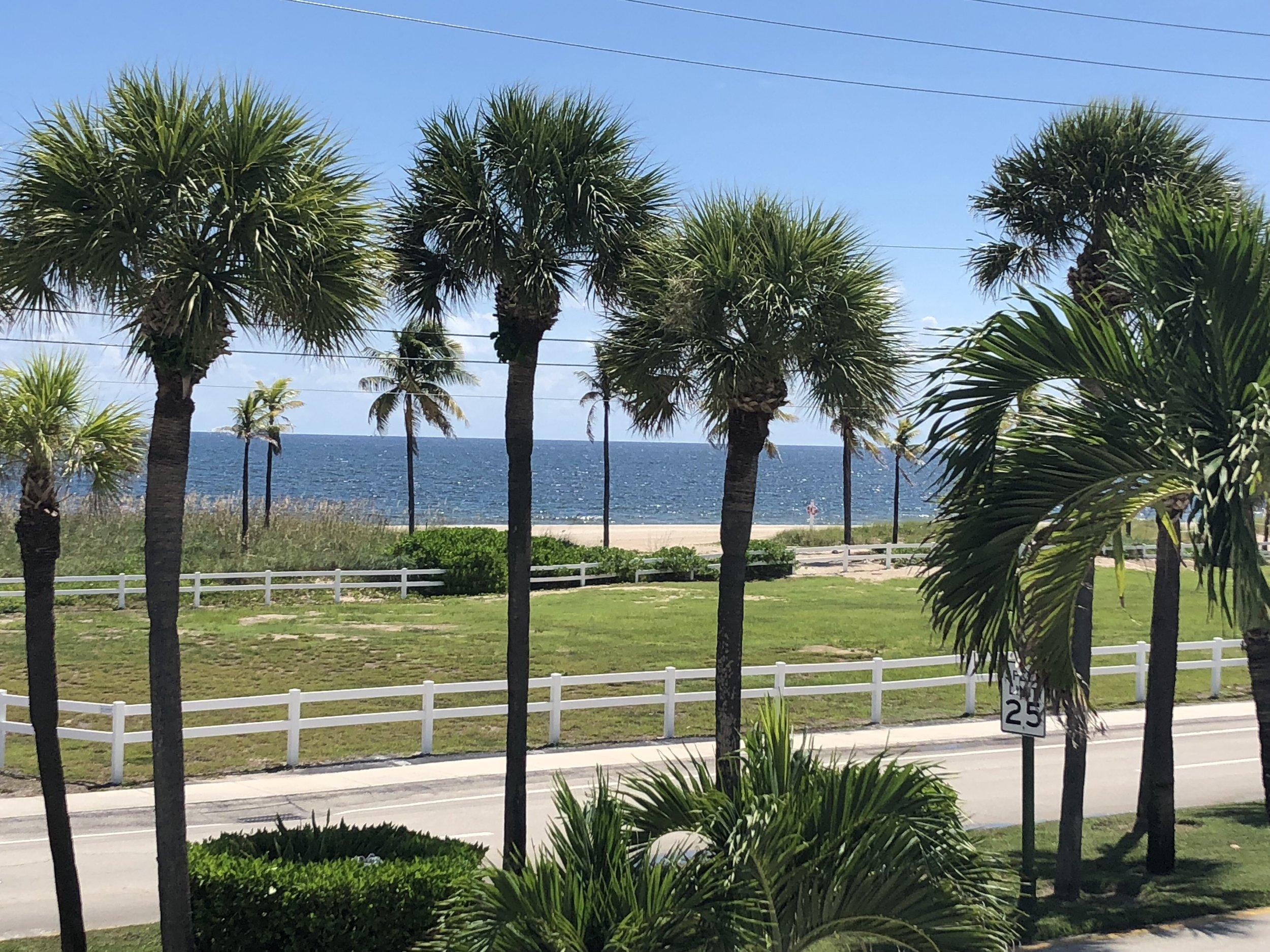 beachview.jpeg