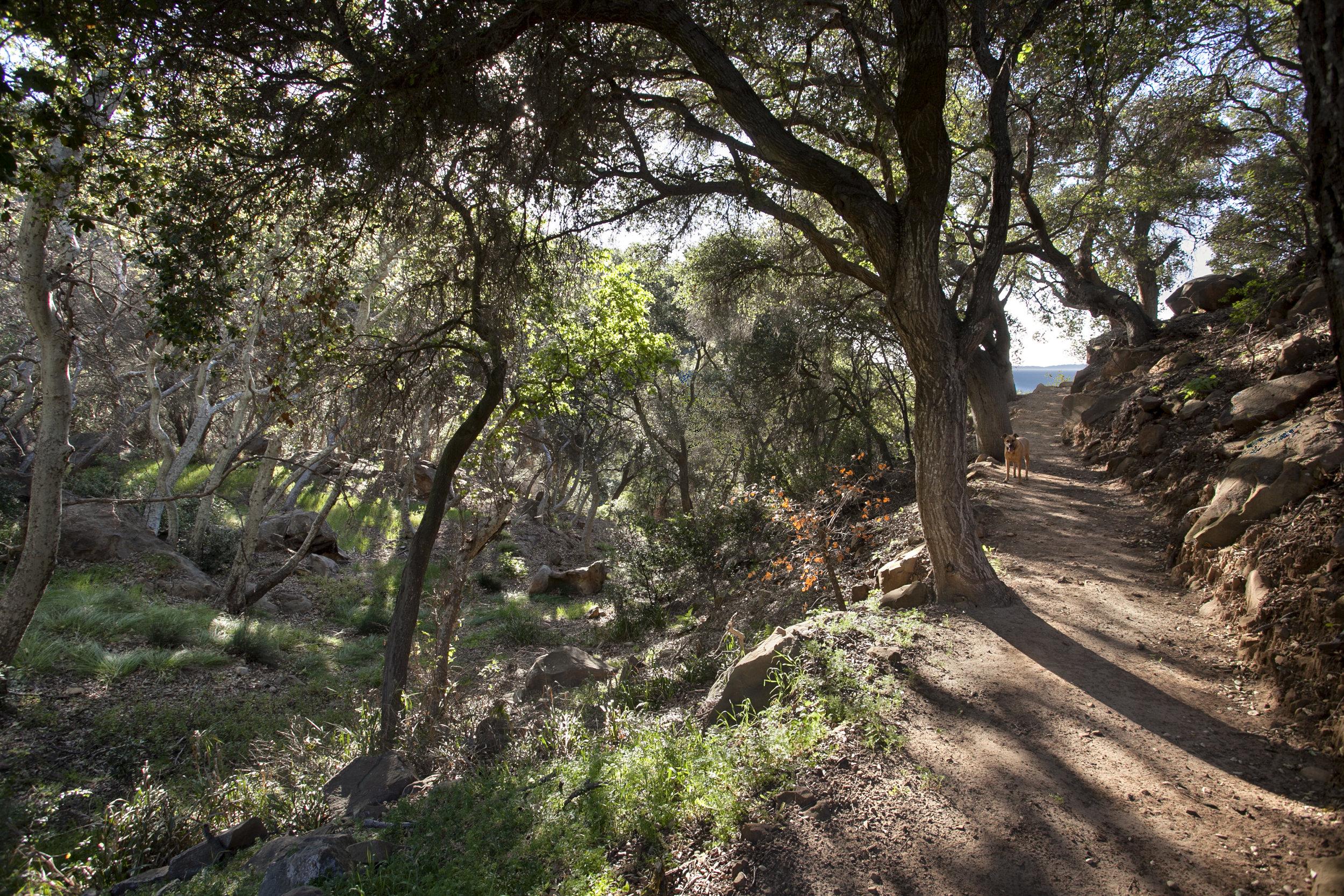 0-Rancho-San-Roque.jpg