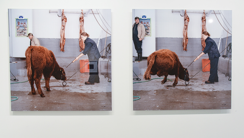 KIM WALDRON: Before and After (image one and two), 2010 Inkjet print