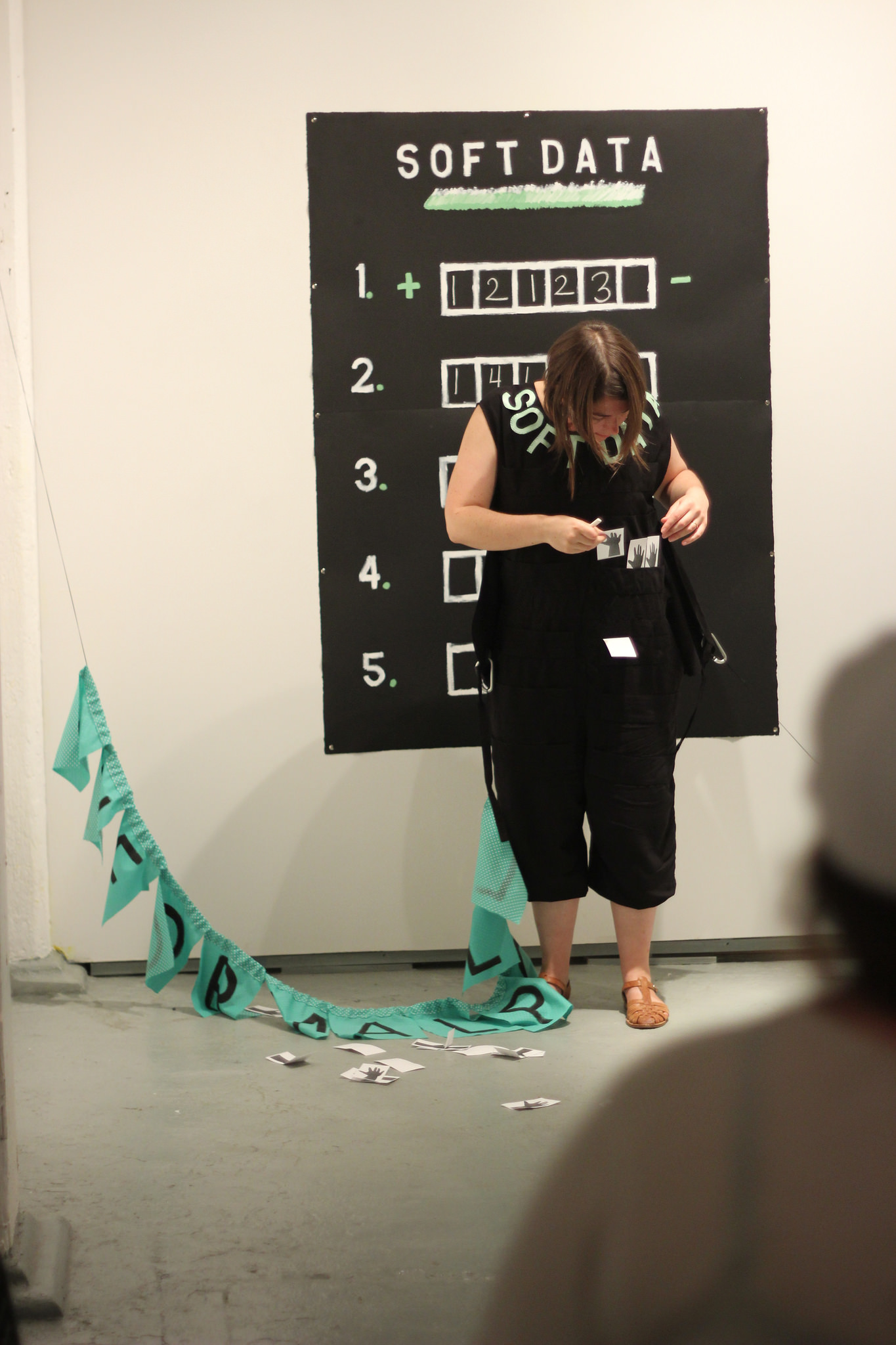 Cayla Skillin-Brauchle, Soft Data