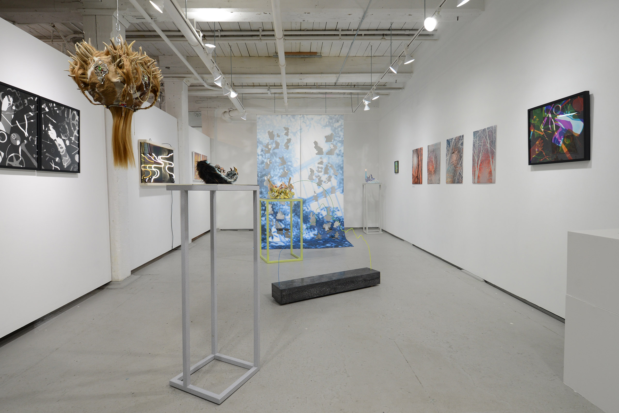 June 15 - July 21 2019       Shadow of the Gradient       Devra Freelander, MaDora Frey, Rachel Guardiola, Roxanne Jackson, Taryn M. McMahon, Kat Ryals, Shelley Smith curated by Ortega y Gasset Projects Co-Director Clare Britt.