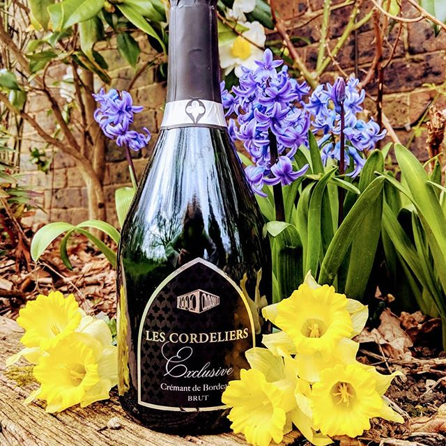 Happy Easter and bank holiday everyone! Time to crack open a wonderful fizz! ☀️🍾🥂❤️ #everyglassmatters . . . . . . . . . . . #wine #wino #winery #vino #wines #vineyard #bottle #bottleshot #drinks #drinking #food #foodie #foodandwine #wineandfood #learn #wow #learnaboutwine #instagood #instawine #instafood #love ❤️