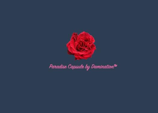Paradise - A Damination Production