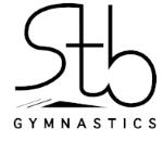 logo STB.jpg