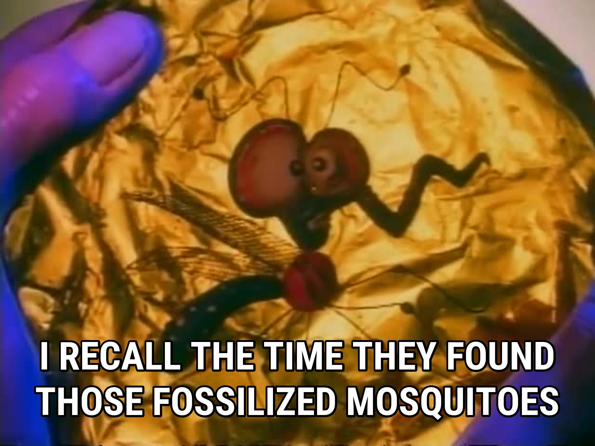 535207-weird-al-yankovic-i-recall-the-time-they-found-those-fossilized-mosquitoes.jpg