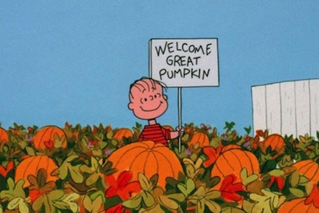 Pumpkin believer, Halloween person