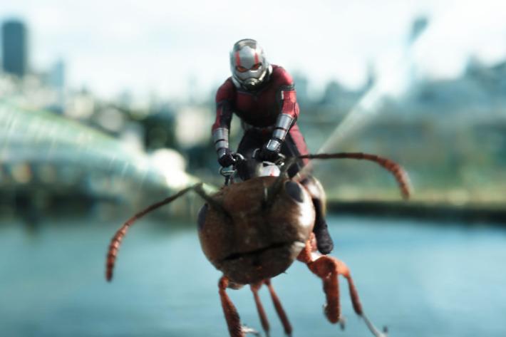 27-ant-man-wasp.w710.h473.jpg