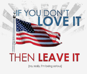 if_you_dont_love_america_then_leave_it_t_shirt-r7f6fb58256f1496aaacd40049838bf67_k2gr0_307.jpg