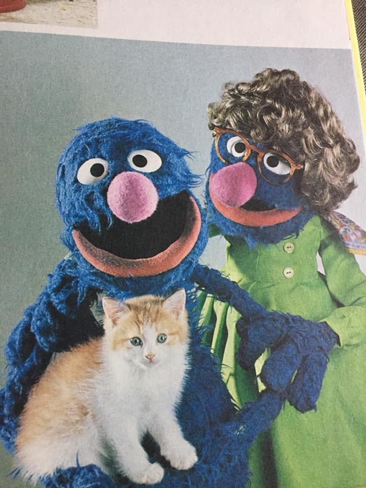 The only possible thing cuter than Grover is Grover with a kitten, and the only thing cuter than Grover with a kitten is Grover with a kitten AND his mommy! Oh mommy!!!!!