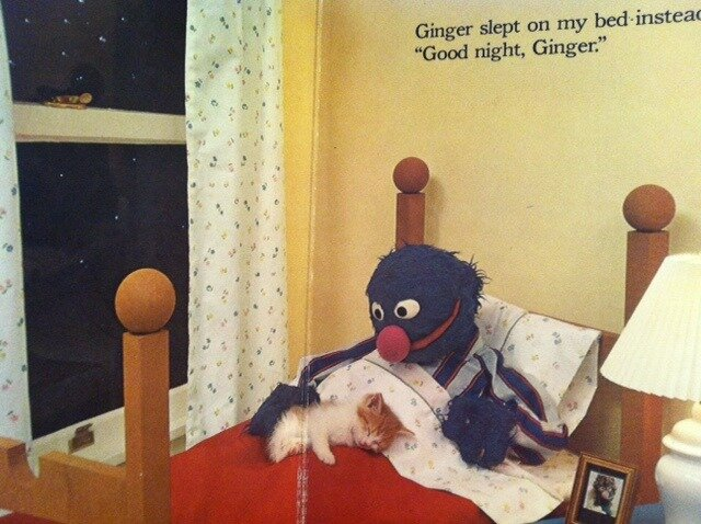 Ginger the kitty is sleeping with Grover! Is that not too much! How can one stationary puppet be so expressive and overflowing with love?