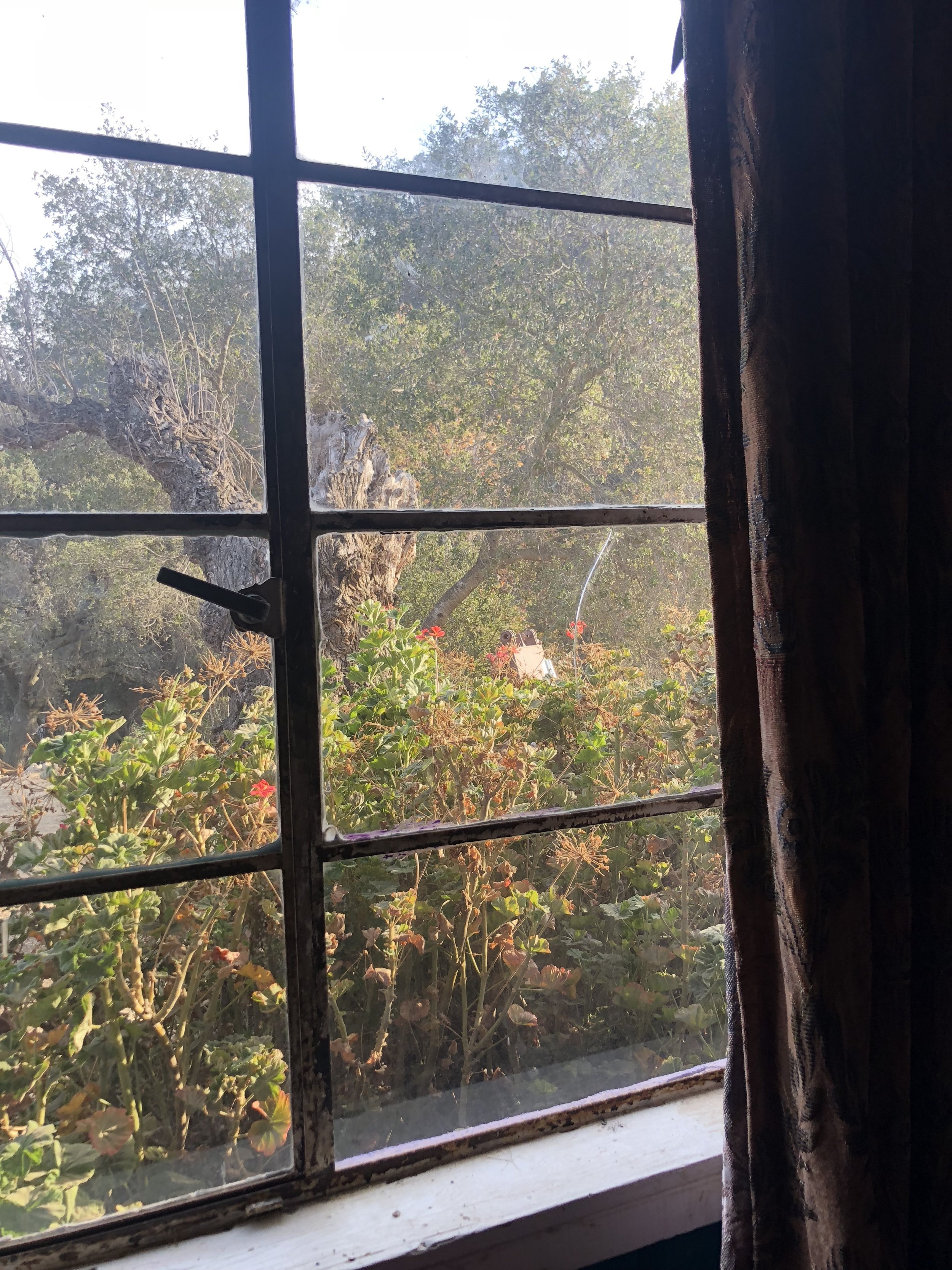 From inside our room in Topanga