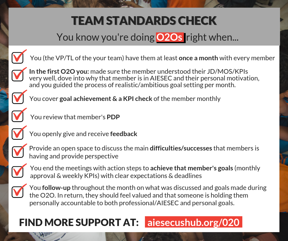 TEAM STANDARDS CHECK (2).png