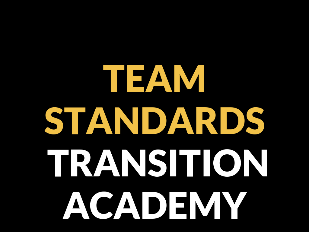 CLICK THE IMAGE ABOVE FOR THE TEAM STANDARDS ACADEMIES