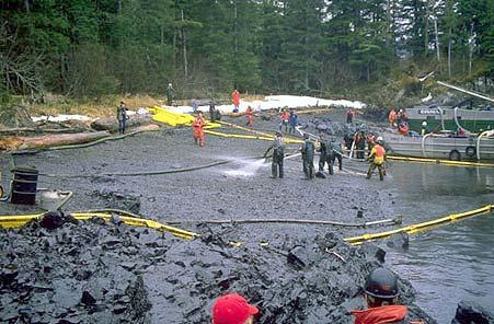 Beach Clean-Up After Exxon Valdez Oil Spill