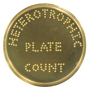 Heterotrophic Plate Count