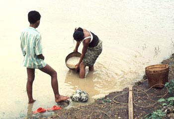 People collecting dirty water