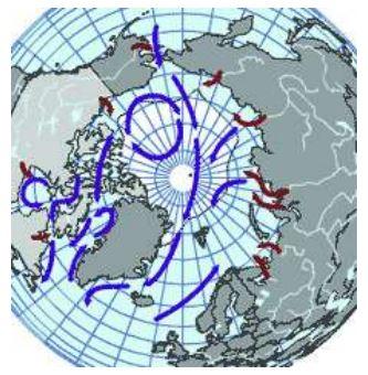 Transportation de contaminants par les océans