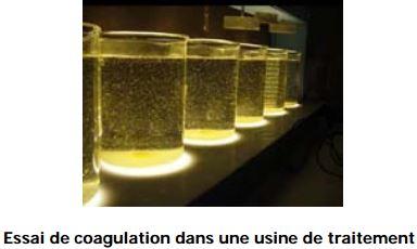 coagulation