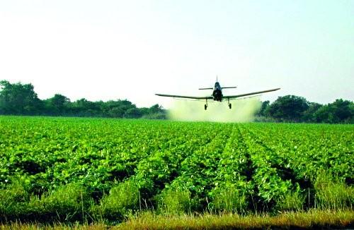 Source:  https://serc.carleton.edu/NAGTWorkshops/health/case_studies/pesticides.html