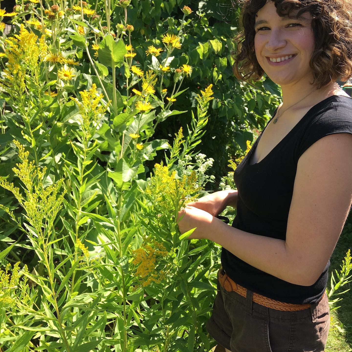 2020 IPMI Curriculum - This comprehensive training in herbal medicine is offered yearly beginning in March. One weekend a month for nine months allow students to observe plants in all stages of growth. Plant identification, harvest protocols, Apothecary and medicine making studies. Registration opens October 2019. Class size is limited.
