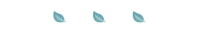 Awaken-leaf-divider.jpg