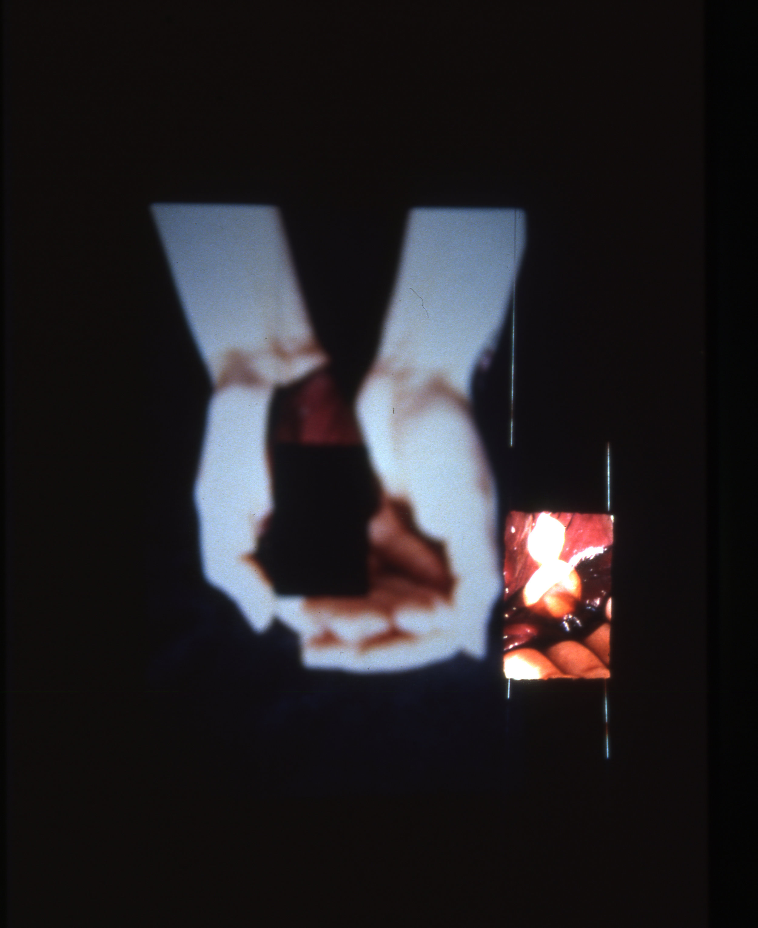 Skin+ 1998 / Slide Projection, Handmade paper
