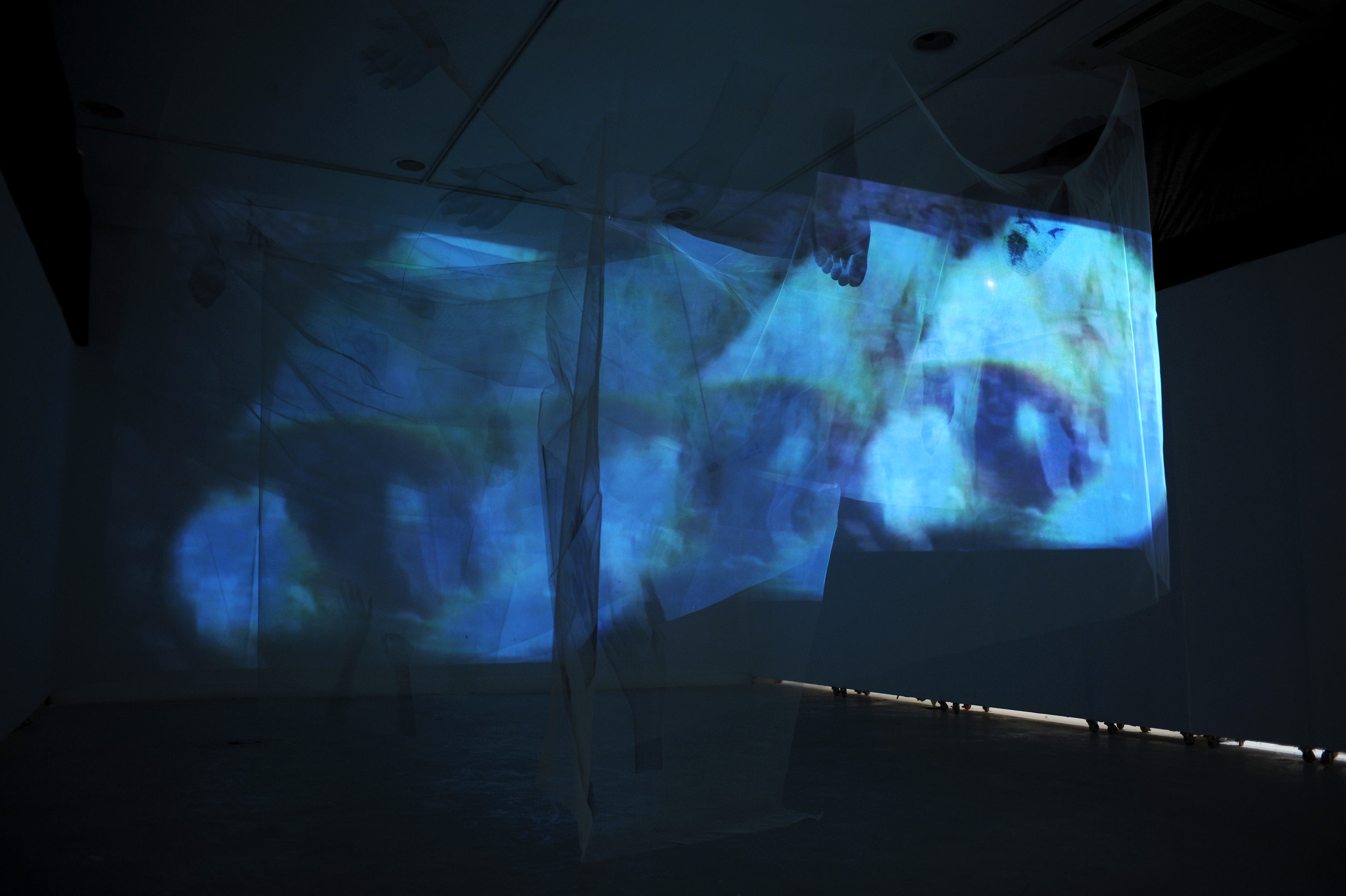 Skin+ 2006 / Video Projection (10min - looped), Light Weight Tulle