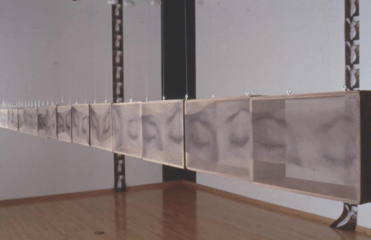 Installation View, Solo Exhibition / William A. Koehnline Gallery, Des Plaines IL / 2000