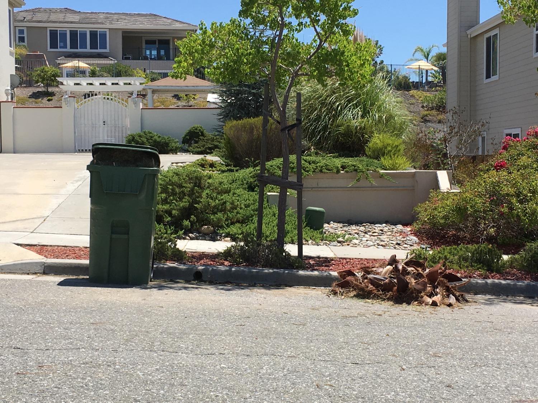Yard Waste, Evergreen Neighborhood 2017
